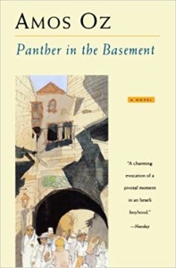 OZ Panther in Basement