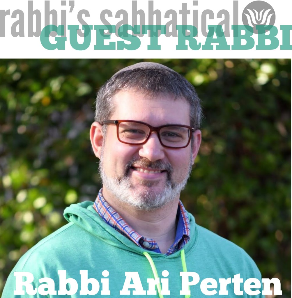 Rabbi Perten - MC (2)